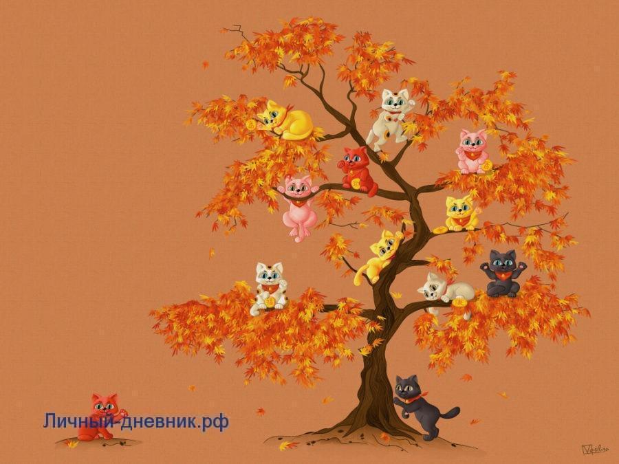 Личный дневник осень, котики , кленовые листья