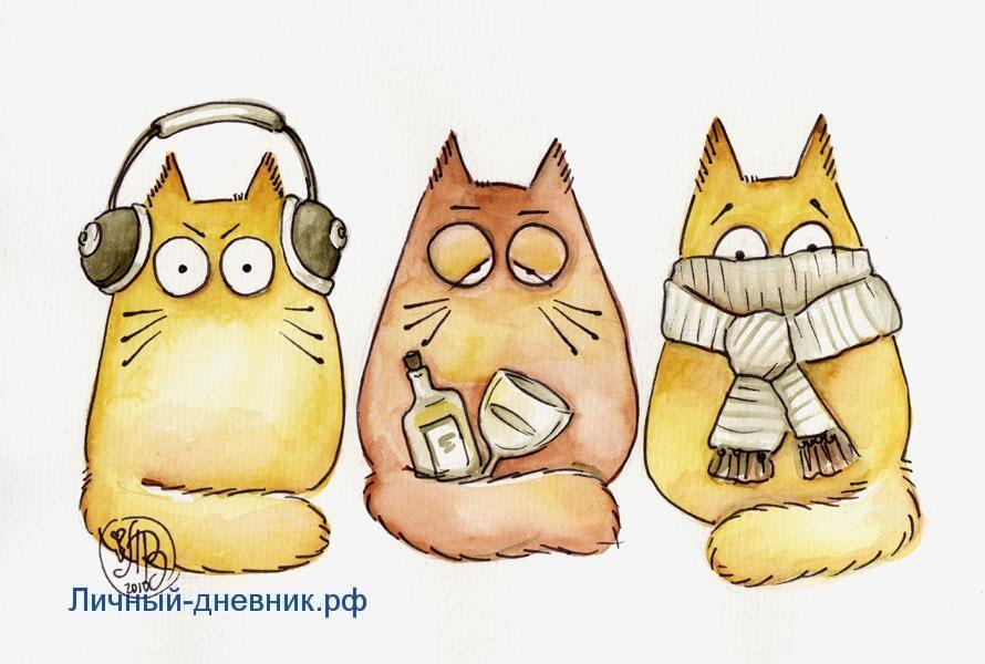 Осенник коты прикольные