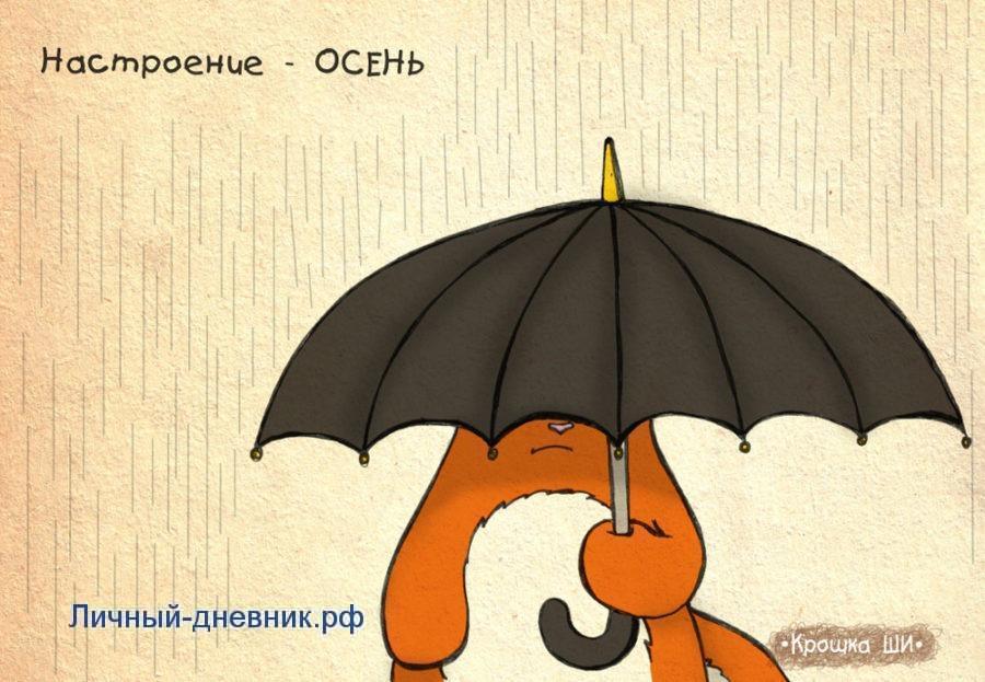 Лиса осенью под зонтиком личный дневник