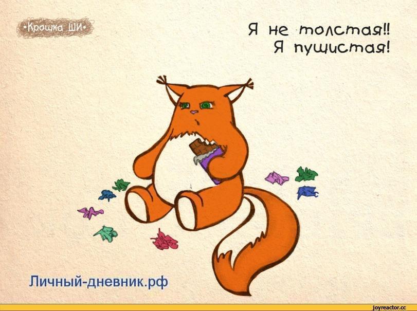 толстая лиса в личном дневнике