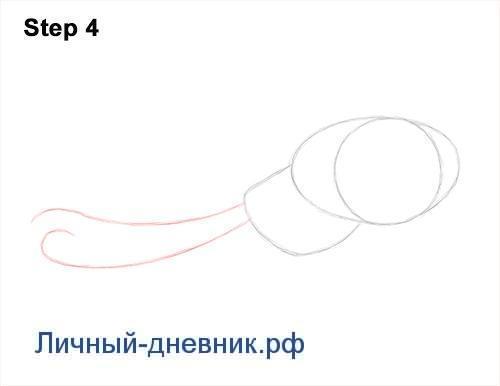 Как нарисовать осьминога