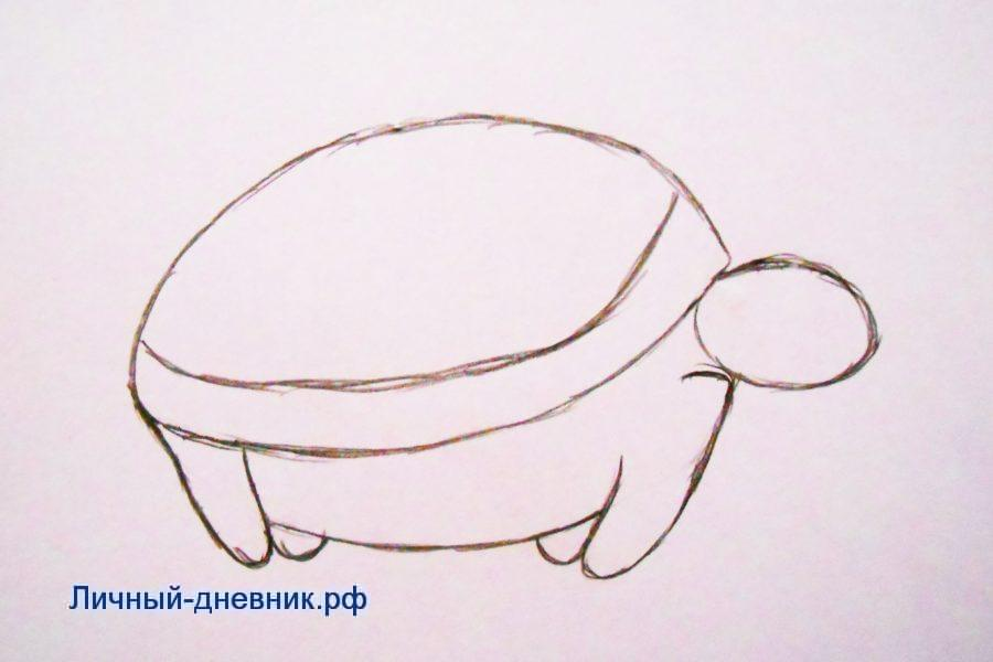 Как нарисовать черепаху Карандашом