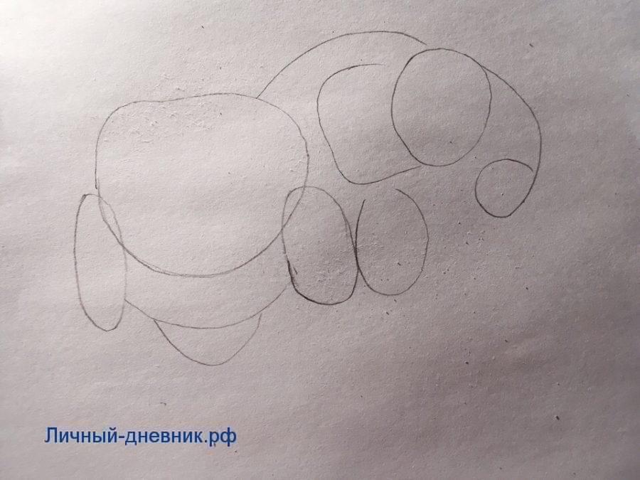 Как нарисовать слона поэтапно карандашом для начинающих