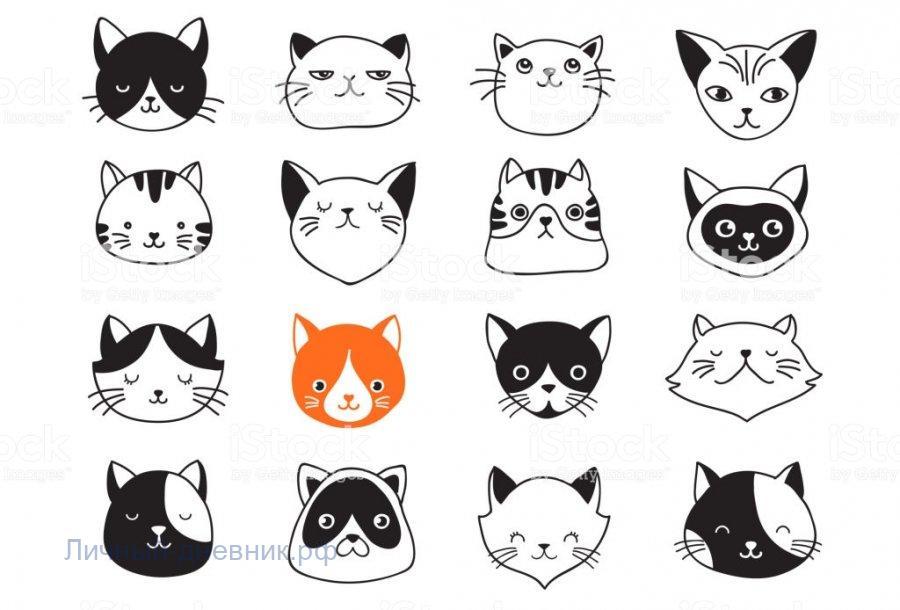 Стикеры для ЛД - ОченьМилые котики